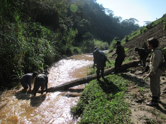 Rangers and trackers moving creating a bridge across the river