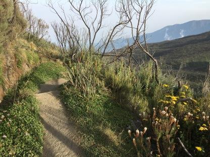 Landscape on Little Meru.